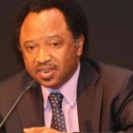 Opinion: What Do We Do Will With Shehu Sani's Revelation? By Abimbola Adelakun