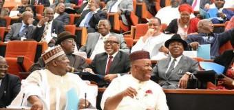 Activist Says Nigerian Senators Earn More Than Trump, British Prime Minister
