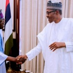 Buhari 2019: I'm A Democrat, Internal Democracy Should Be Entrenched – Tinubu Insists