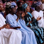 Tinubu Colloquium And The 'Benching' Of Fashola As A Spectator, By Enitan Olukotun