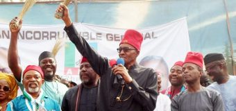 2019: Buhari Woos South East With More Projects